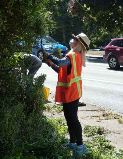 Image of volunteer at Kirkland Weeds